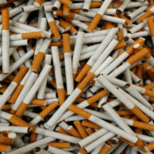 NGT orders study to find if cigarette butts fall within category of toxic waste